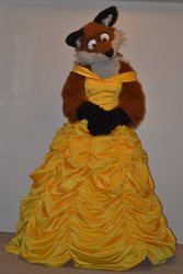 Wildfox's favorite Disney princess?