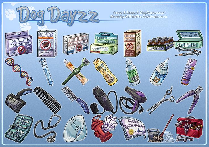 DogDayzz: Grooming and Medicine
