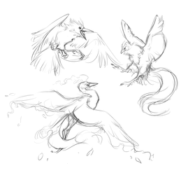 Birds of a Feather WIP