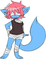 Knox the Cat