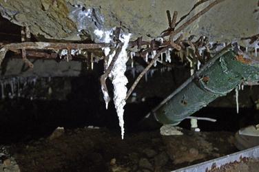 Black Forest Underground 2