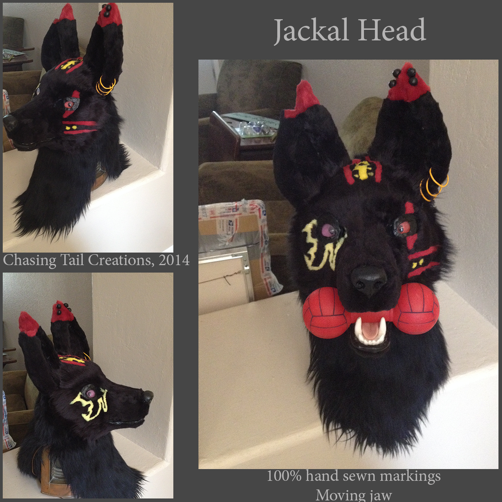 Most recent image: Jackal Head