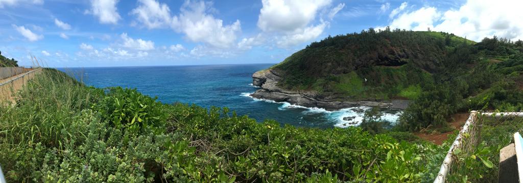 Kilauea Point panorama 2/2