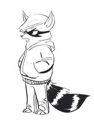 Remetheus the tuff raccoon- commission for Remetheus