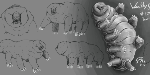WeeklyStudies #139 Tardigrade