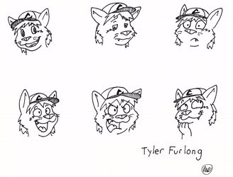 TylerFurlong Expression Sheet