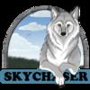 Avatar for Skychaser