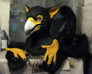 African black eagle gryphon partial for sale on furbuy!