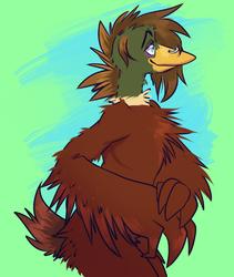 feathery friend