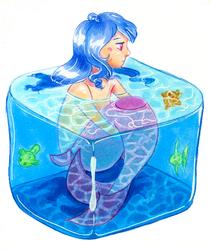 Mermaid Cube