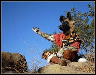 Kahini Wild Dog on a Pilgrimage 4 of 4