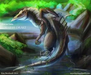 Almicia Fauna: Marsh Drake