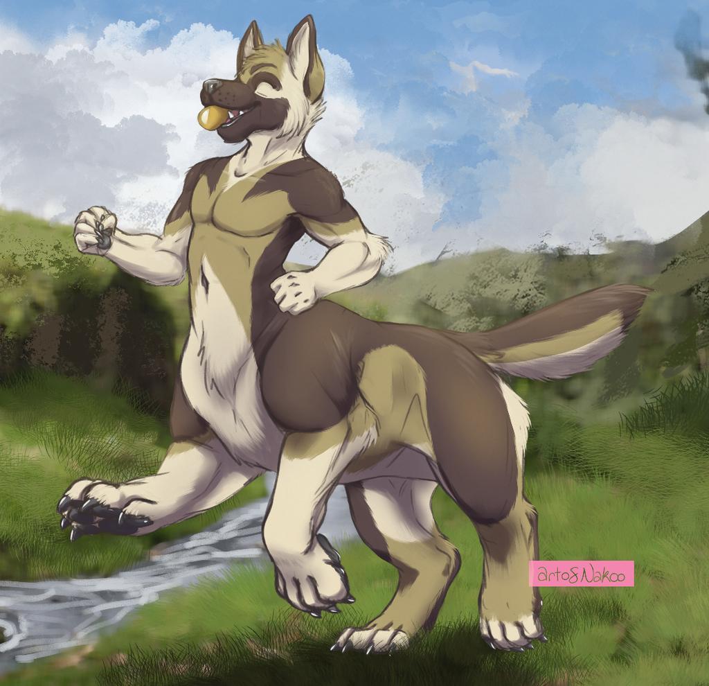 Commission: Fetch!