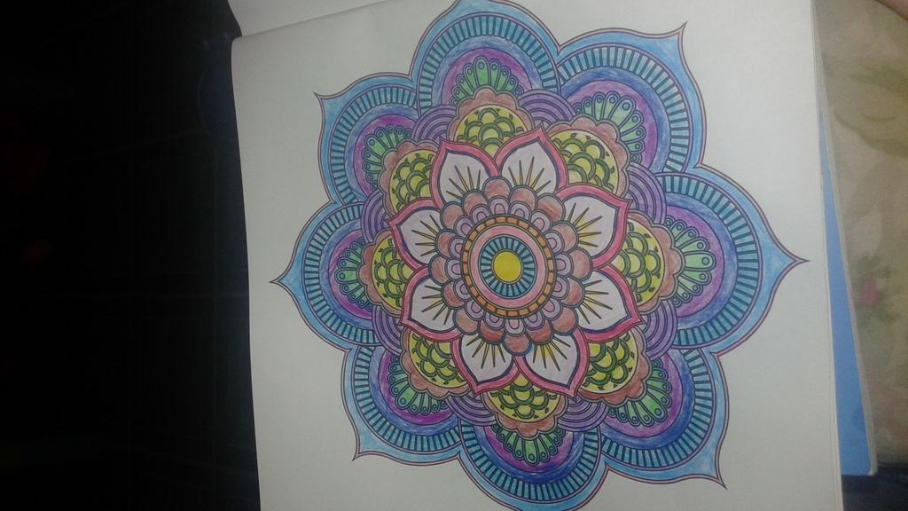 Most recent image: Flower