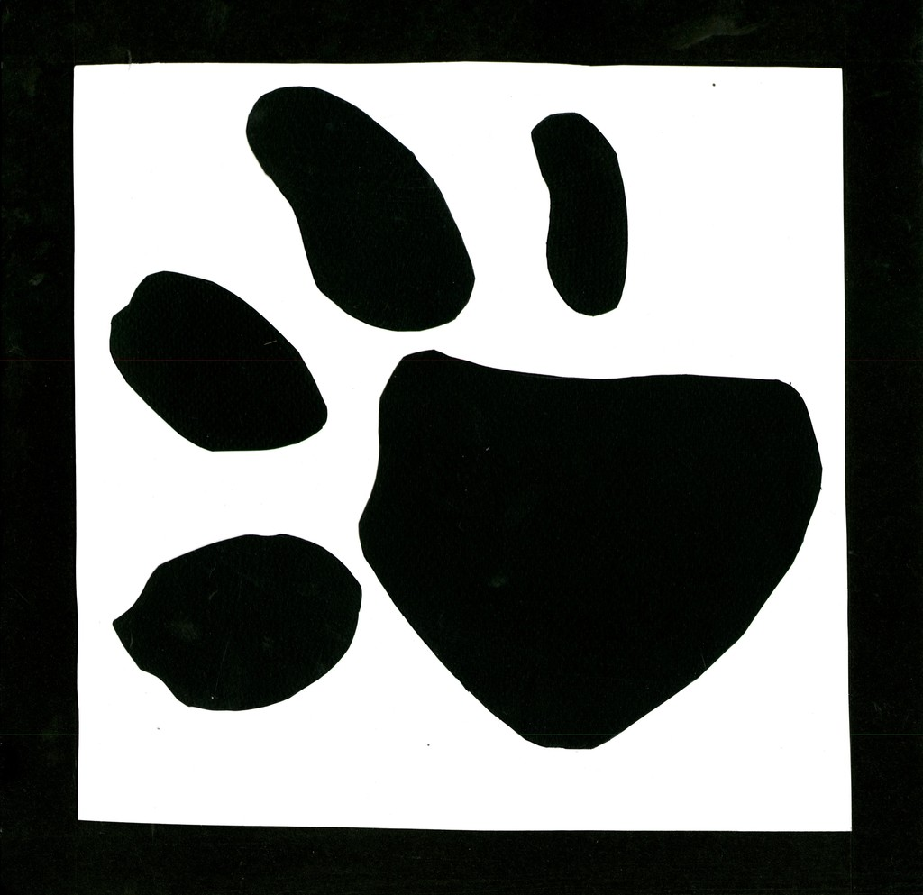 Most recent image: Paw Print