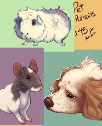 Pet Portrait Example Page
