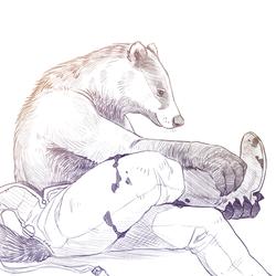 Warwick Sketch5