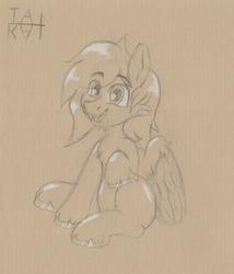 Random Smiling Pony