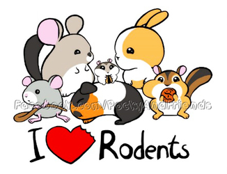 I Love Rodents
