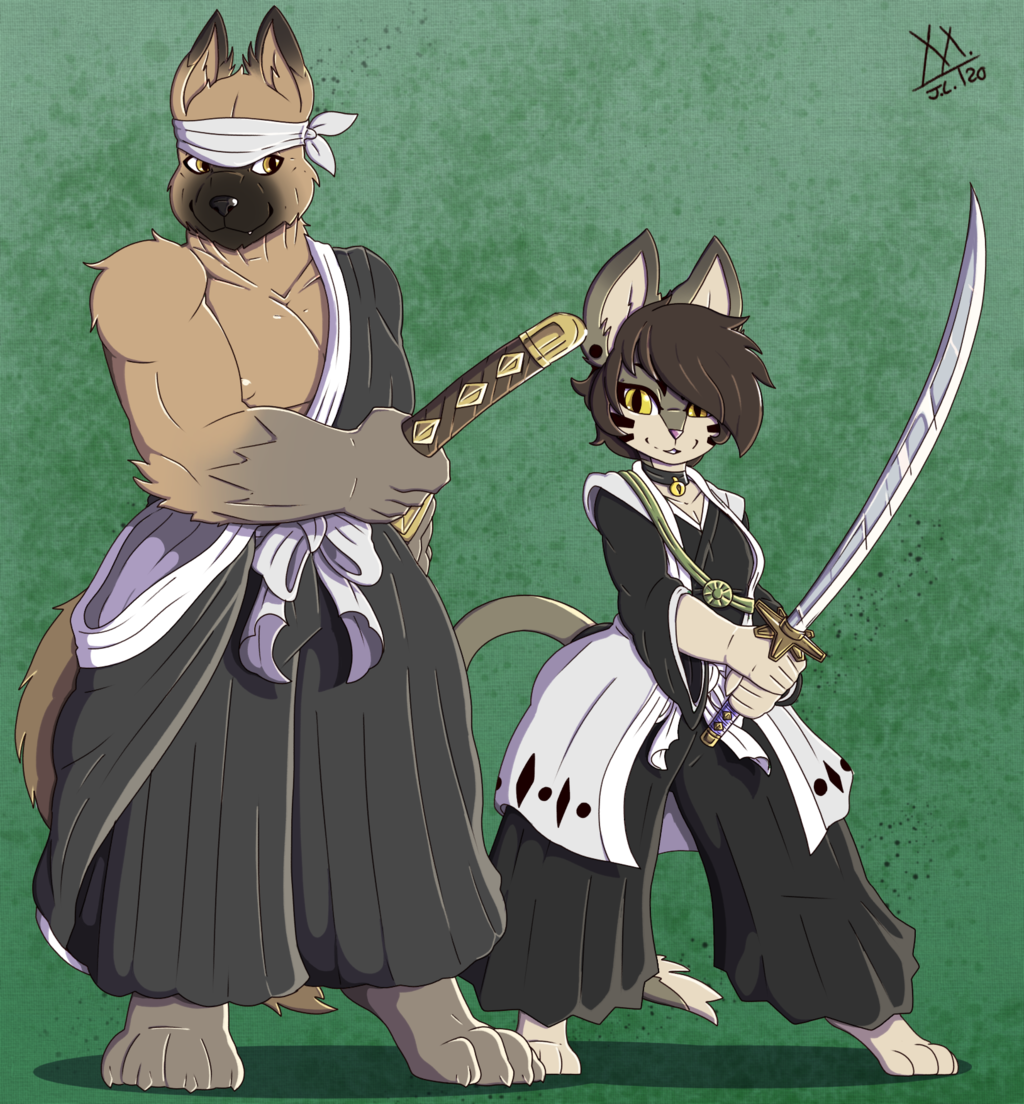 Swords Cats and Dogs