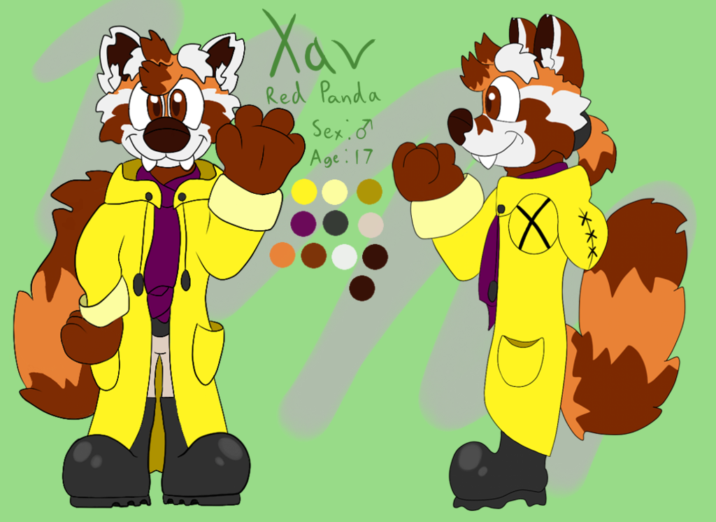 Most recent image: Xav the Red Panda Reference Sheet