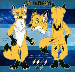 .: Volta Furron Reference Sheet [COM]
