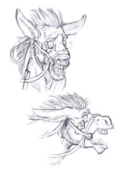 Commission: Donkey TF Sequence 8