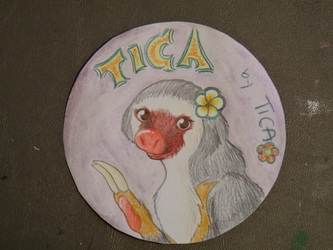 Tica badge, colored pencil