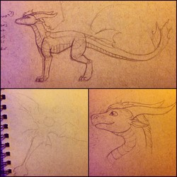 Uro's Dragon Design