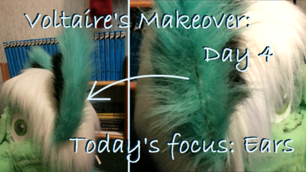 Voltaire's Makeover: Day 4