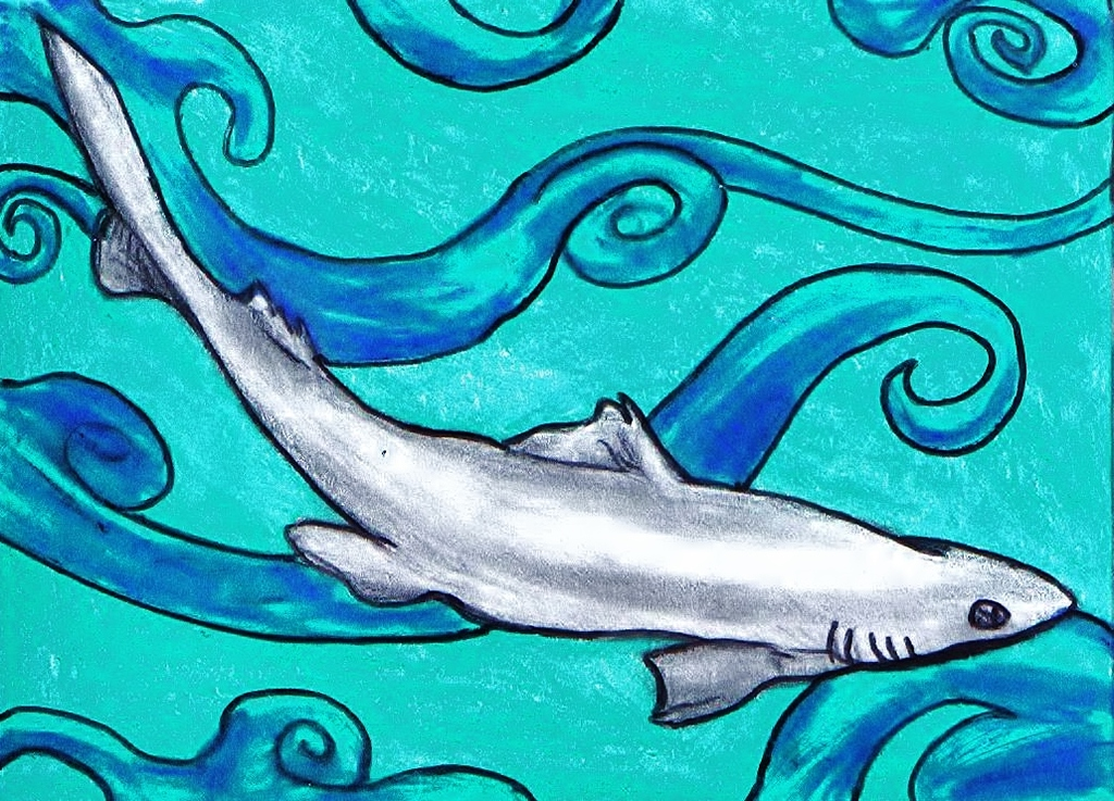 ACEO--Spiny Dogfish~