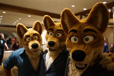 We three Dingo's...