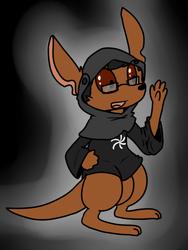 Kangaroo Space Monk