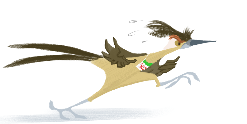 Most recent image: Day 97: Greater Roadrunner