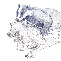Warwick Sketch1