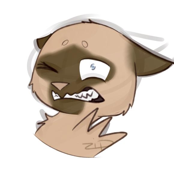 Important Expressions Meme - Simon