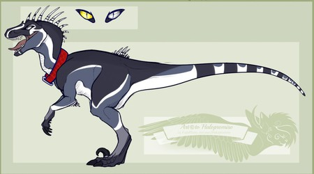 Toqen raptor custom