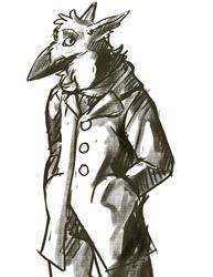 Charcoal-y bird