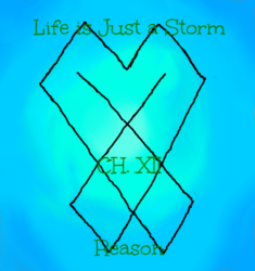 Life is Just a Storm- Chapter 12- Reason