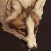 avatar of Innali