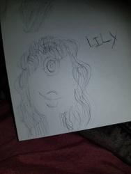Lili traditional sketch