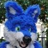 avatar of furfi wolf