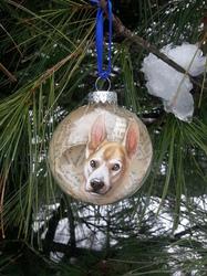 Odin Ornament