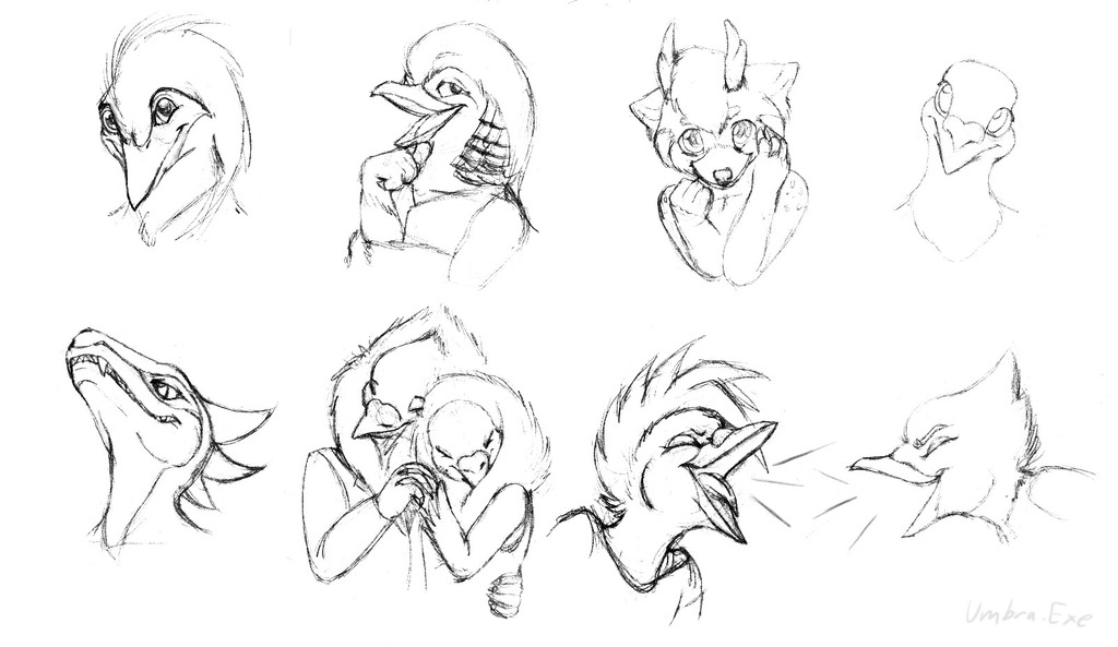 Head Sketches 1- Birds, a Pandeer, and a Raptor