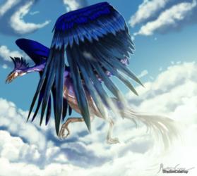 . Commission . Blue Phoenix .