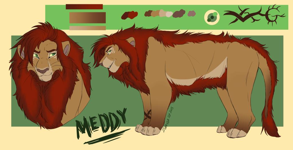 Comm-Meddy the hottie