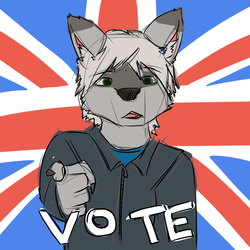 VOTE! (Please repost at will, signal boots welcome!)