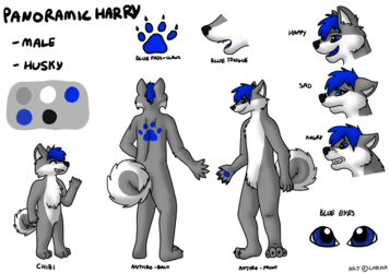 Panoramic Harry Ref