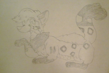 Sevral (drawing gift)