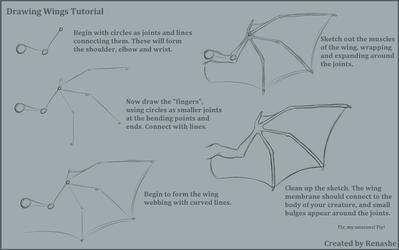 Drawing Webbed Wings Tutorial